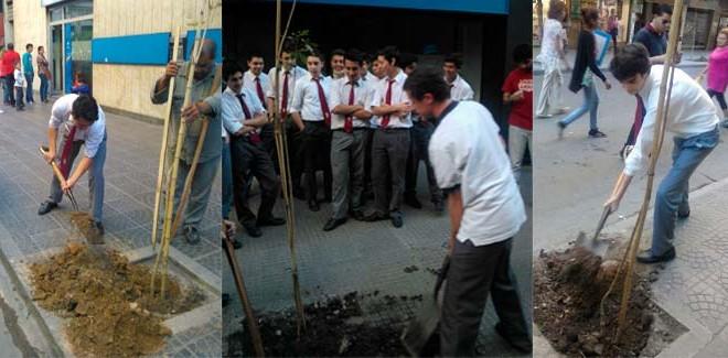 Plantamos árboles en el Día Mundial del Medio Ambiente