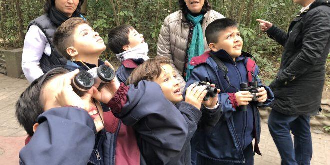 Visita a la Fundación Miguel Lillo